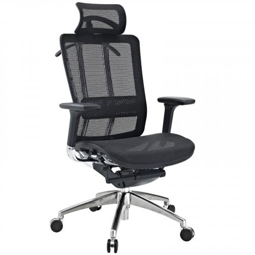 Future Ergonomic Executive Office Chair