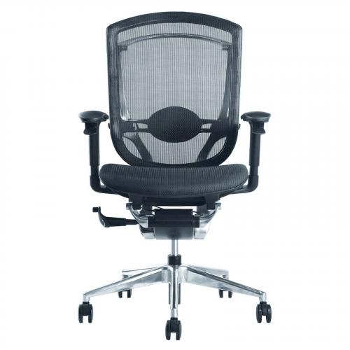 Ergo Fit Highly Adjustable Mesh Office Chair, Black